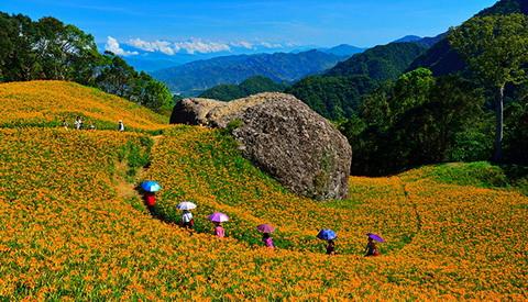 台湾每月一景